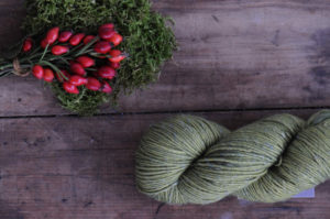 Seasonal Yarn