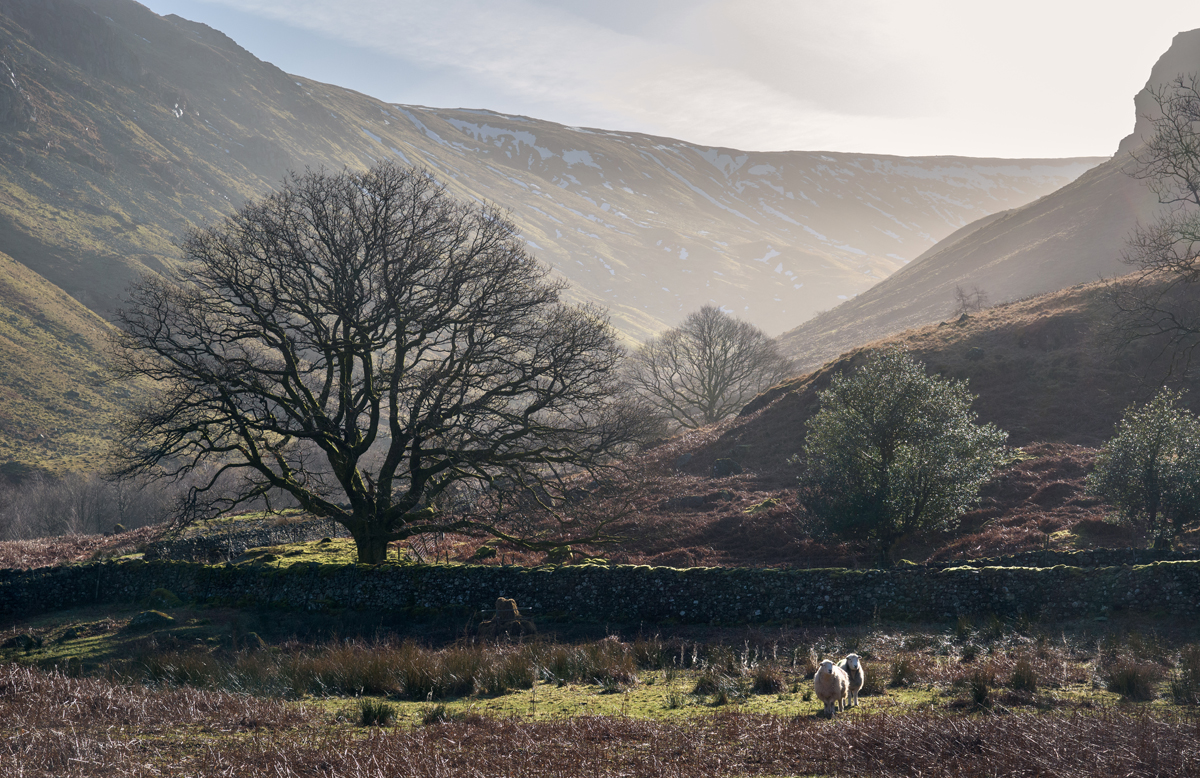 Cumbria Landscape by Tommy Martin for The Fibre Co.