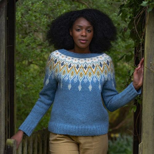 Pale blue colourwork yoke sweater with pops of cream, yellow, green and brown.